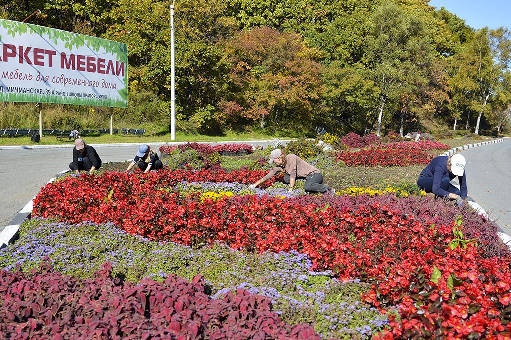 В Находке началась осенняя уборка на клумбах и цветниках